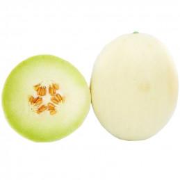 Melon Silver Heaven...