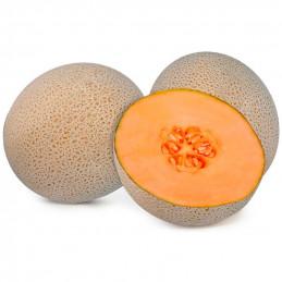 Melon Guerrero...