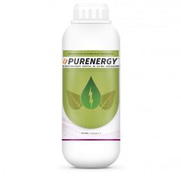 Purenergy 1L,...